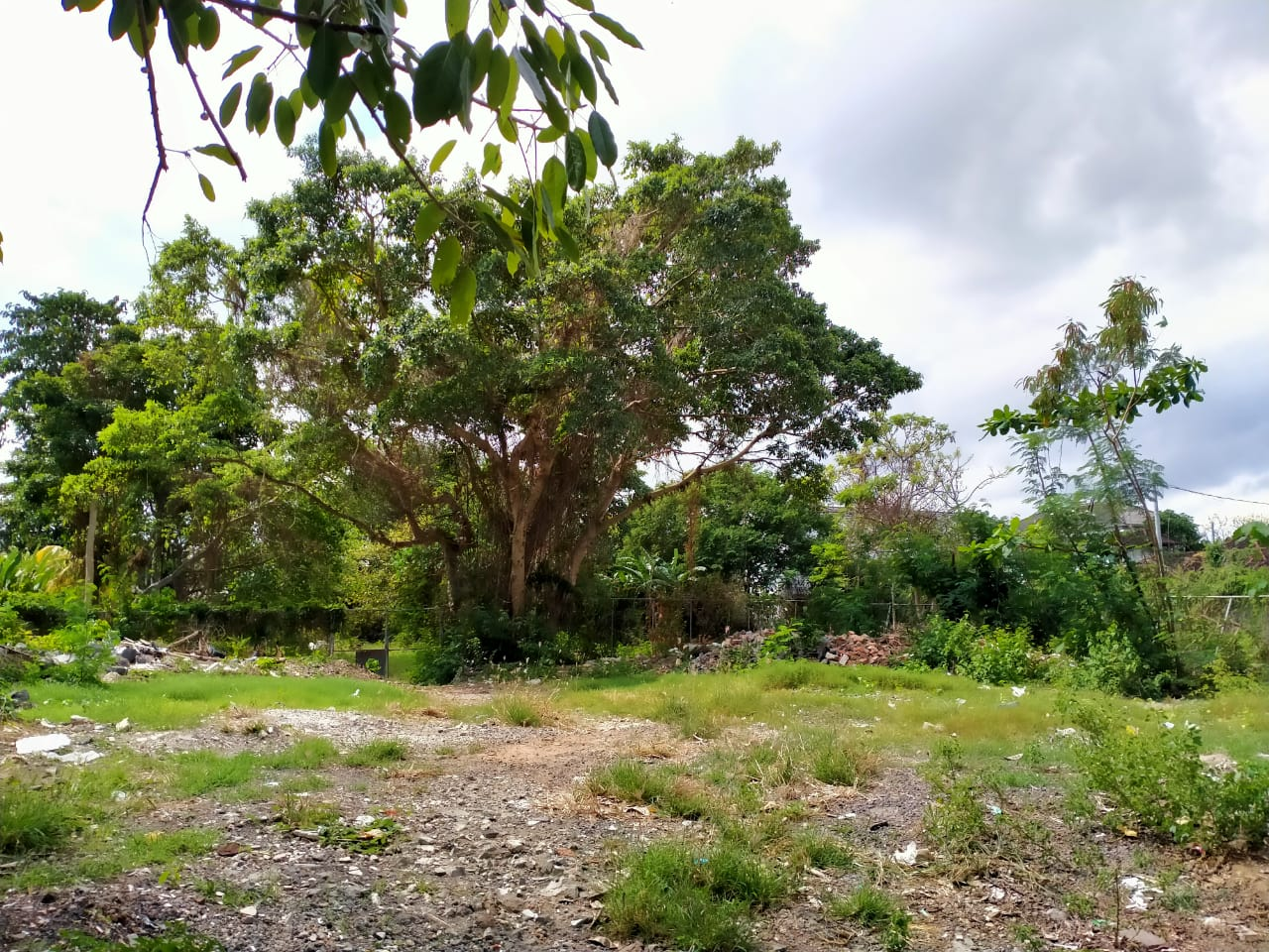Incredible Commercial and Residential Land